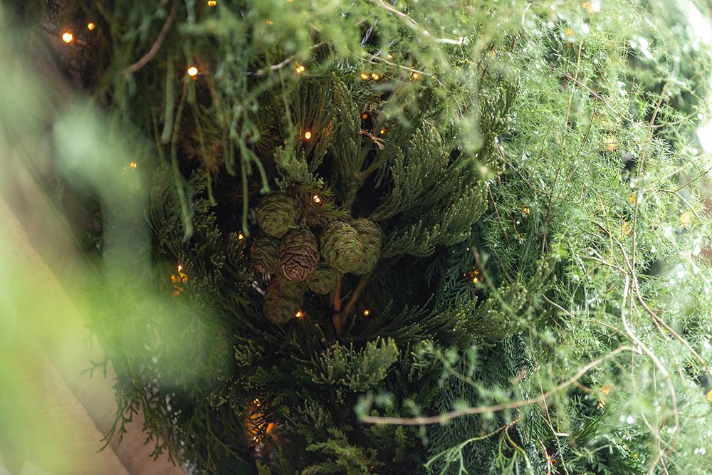 Christmas vibes @ Cosmident